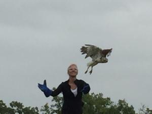 Woman Releasing Bird